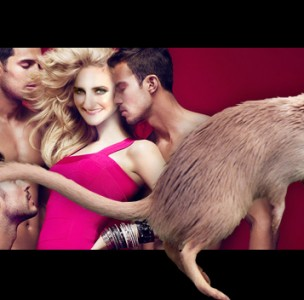 Why Dating is Like Owning a Pet Gerbil